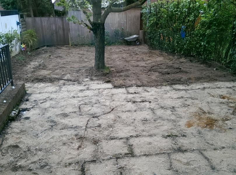 Garten im Umbruch