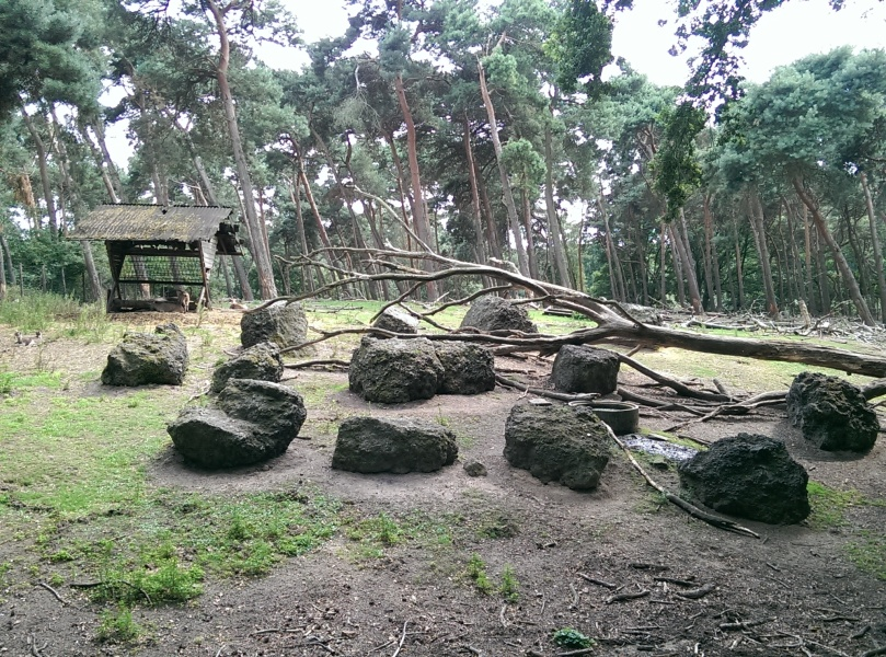 Das Steinbock-Gehege
