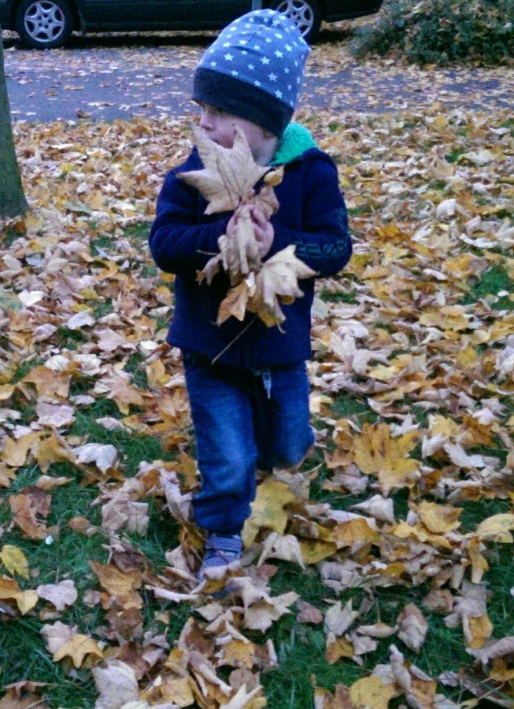 Herbstgestöber
