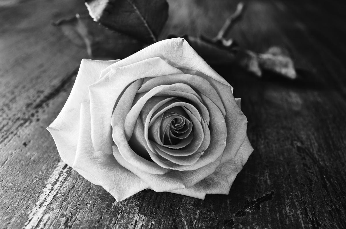 Von Abschied, Trauer und anderen Dingen, die nicht glücklich machen