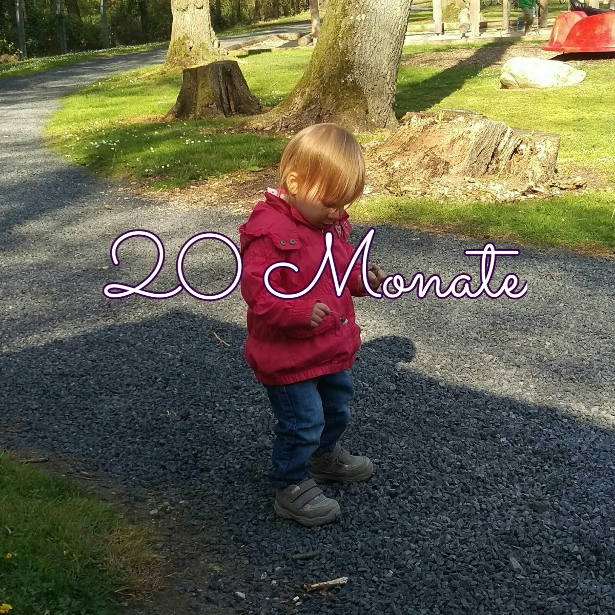 20 Monate