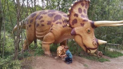 Den Dinosauriern auf der Spur